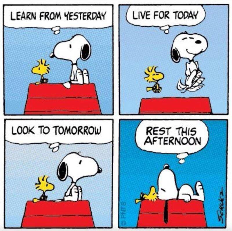 Photo credit: Peanuts
