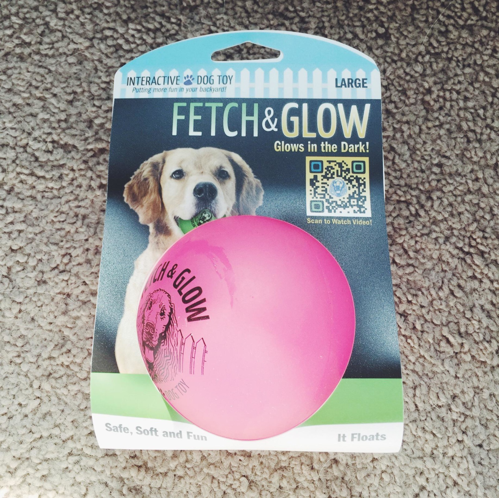 fetch and glow ball