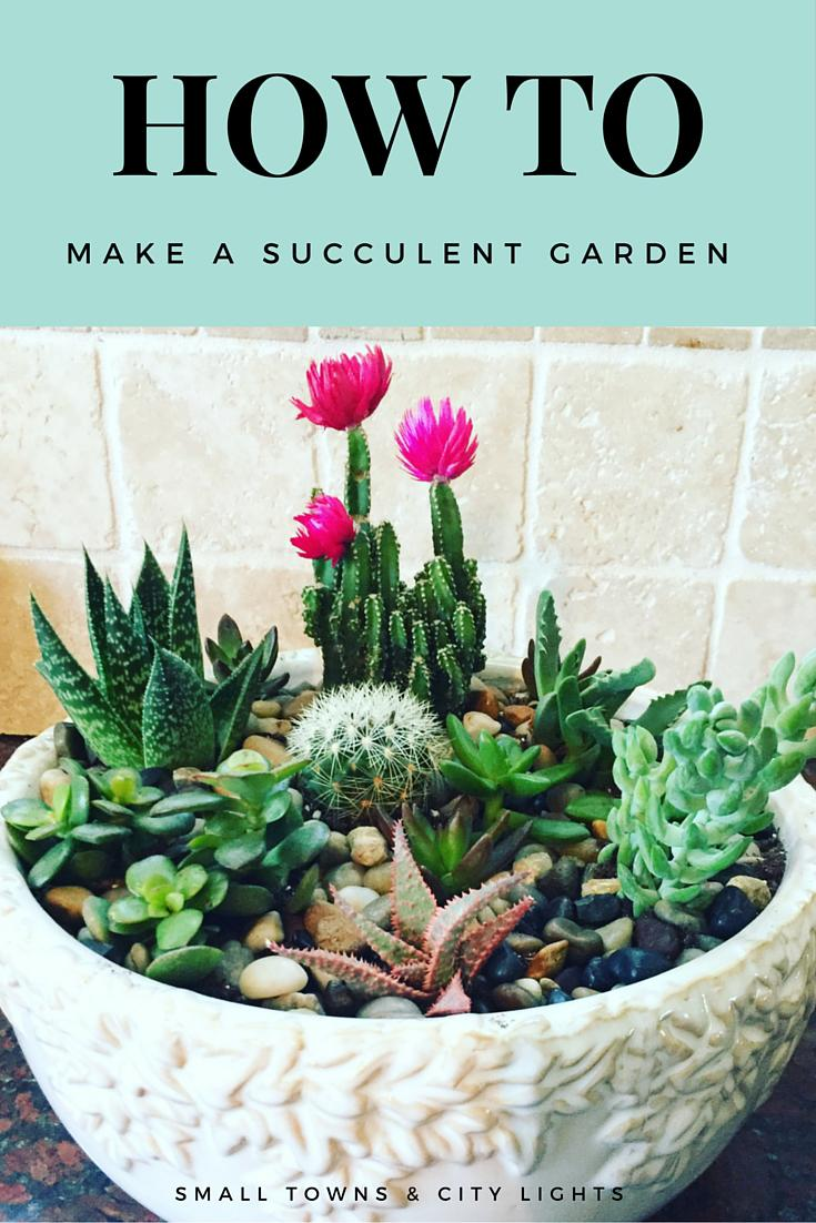 How To Make A Succulent Garden Small Towns City Lights