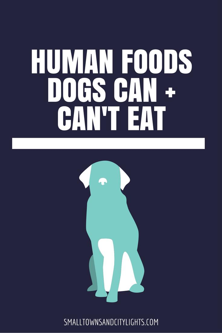 What Human Food Can Dogs Eat For Breakfast