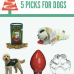 Don't forget your dog(s) this Christmas! Check out these gift ideas!