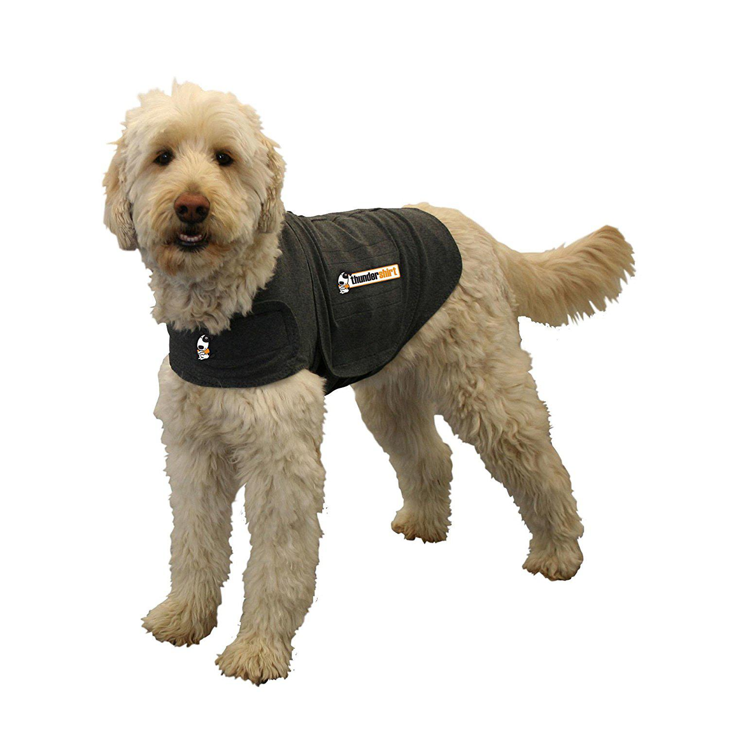 Anxious dog? Check out the Thundershirt!