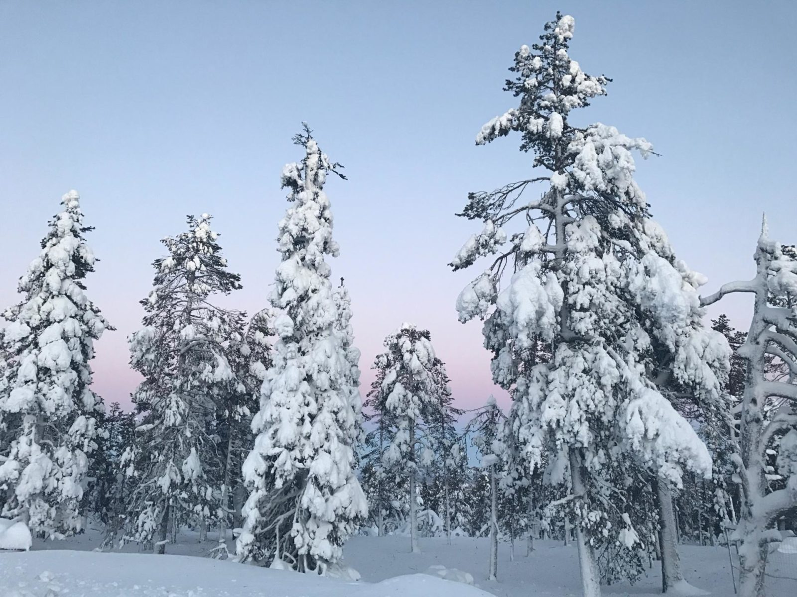 Lapland, Finland is the most beautiful place I've ever been! If ever there was a place to add to the bucket list, this is it! See how you can spend 2 days in the town of Levi!