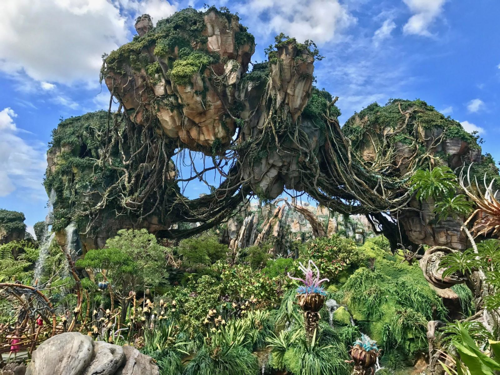 Exploring Disney's Pandora – The World of Avatar